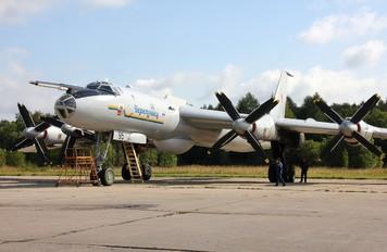95 BLACK - Russia - Navy Tupolev Tu-142MK