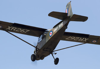 G-BJXR - Private Auster AOP.9 Alpha