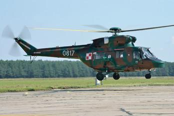 0817 - Poland - Army PZL W-3 Sokół