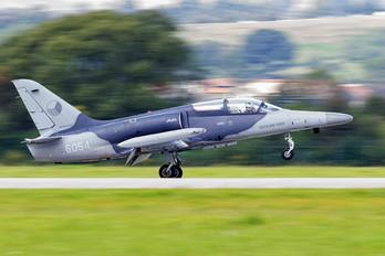 6054 - Czech - Air Force Aero L-159A  Alca