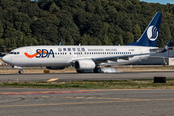 B-1988 - Shandong Airlines  Boeing 737-800