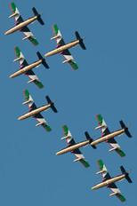 "438 - United Arab Emirates - Air Force ""Al Fursan"" Aermacchi MB-339NAT"