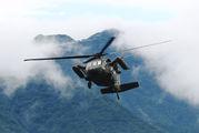 43102 - Japan - Ground Self Defense Force Mitsubishi UH-60J aircraft