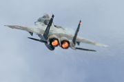 62-8864 - Japan - Air Self Defence Force Mitsubishi F-15J aircraft