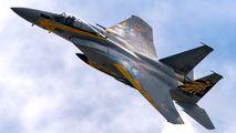 72-8960 - Japan - Air Self Defence Force Mitsubishi F-15J aircraft