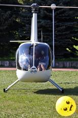 EW-320LH - AVIA-100 Robinson R44 Astro / Raven