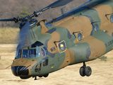 52964 - Japan - Ground Self Defense Force Kawasaki CH-47J Chinook aircraft