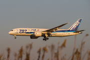 JA813A - ANA - All Nippon Airways Boeing 787-8 Dreamliner aircraft