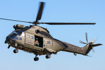 XW214 - Royal Air Force Westland Puma HC.2