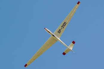 SP-3101 - Aeroklub Poznański PZL SZD-9 Bocian