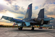 55 - Russia - Air Force Sukhoi Su-30SM aircraft