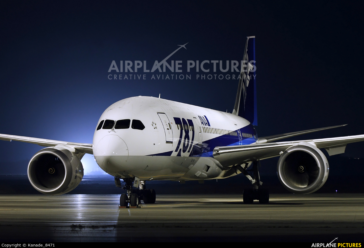ANA - All Nippon Airways JA810A aircraft at New Chitose