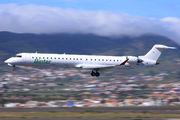 EC-JZV - Binter Canarias Canadair CL-600 CRJ-900 aircraft