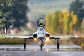 J-3068 - Switzerland - Air Force Northrop F-5E Tiger II