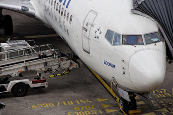 TC-JGN - AnadoluJet Boeing 737-800