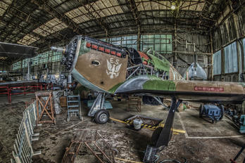Z2389 - Royal Air Force Hawker Hurricane Mk.IIa