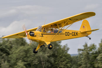 OO-CEK - Private Piper J3 Cub