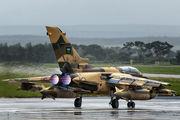 704 - Saudi Arabia - Air Force Panavia Tornado - IDS aircraft