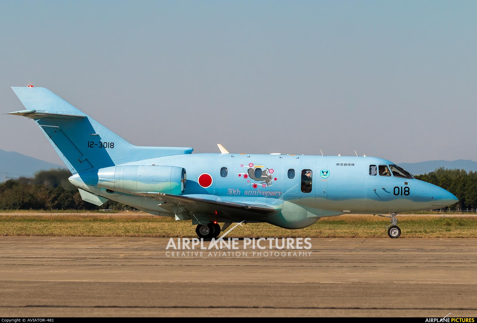 Japan - Air Self Defence Force 12-3018 aircraft at Ibaraki - Hyakuri AB