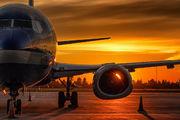 TF-BBF - Bluebird Cargo Boeing 737-300F aircraft