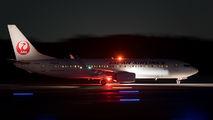 JA312J - JAL - Japan Airlines Boeing 737-800 aircraft