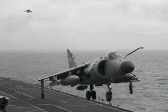 ZH811 - Royal Navy British Aerospace Sea Harrier FA.2