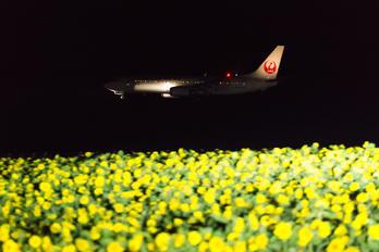 JA341J - JAL - Express Boeing 737-800