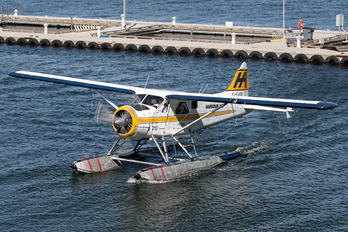 C-FJOS - Harbour Air de Havilland Canada DHC-2 Beaver