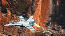 C.15-65 - Spain - Air Force McDonnell Douglas EF-18A Hornet aircraft