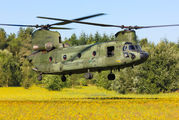 D-665 - Netherlands - Air Force Boeing CH-47D Chinook aircraft