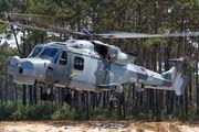 ZZ413 - Royal Navy Agusta Westland AW159 Lynx Wildcat AH.1 aircraft