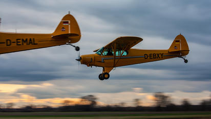 D-EBXY - Private Piper J3 Cub