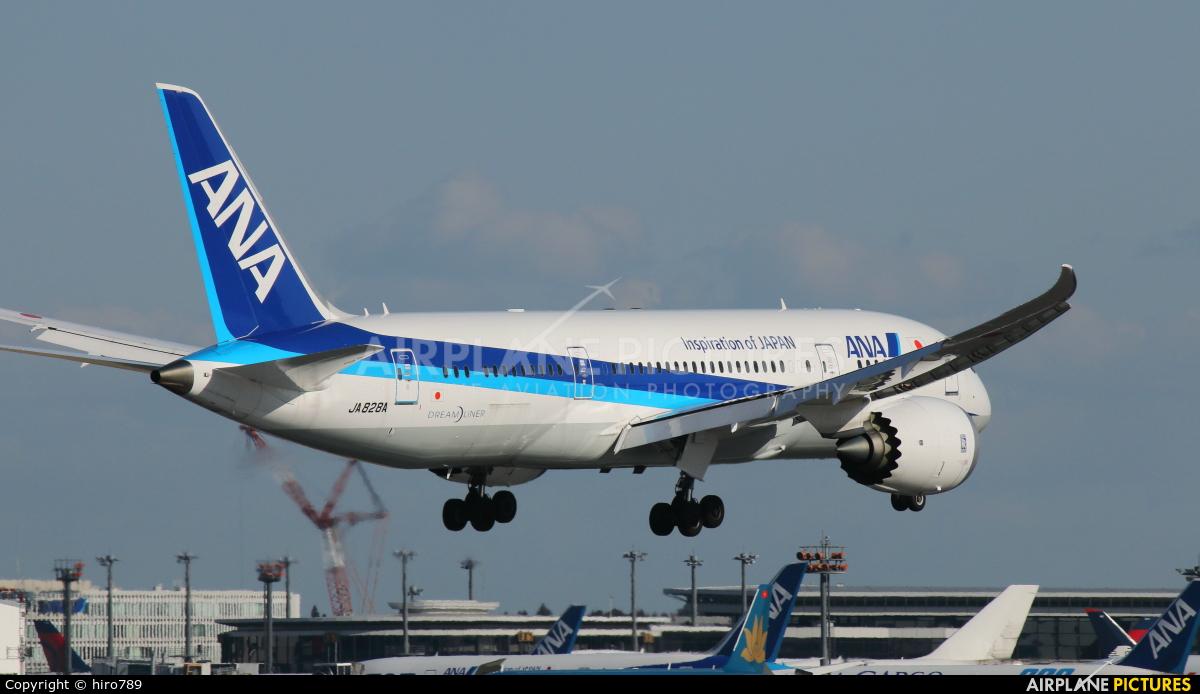 ANA - All Nippon Airways JA828A aircraft at Tokyo - Narita Intl
