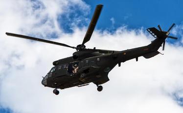 ET-510 - Spain - Air Force Eurocopter AS332 Super Puma
