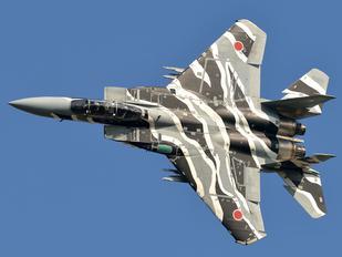 32-8081 - Japan - Air Self Defence Force Mitsubishi F-15DJ
