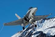 J-5233 - Switzerland - Air Force McDonnell Douglas F/A-18D Hornet aircraft