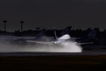 - - ANA Wings Boeing 737-500