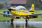 C-401 - Switzerland - Air Force Pilatus PC-9 aircraft