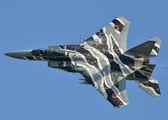32-8081 - Japan - Air Self Defence Force Mitsubishi F-15DJ aircraft