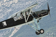 N111FS - Private Fieseler Fi.156 Storch aircraft
