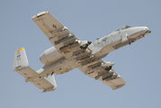 81-0976 - USA - Air Force Fairchild A-10 Thunderbolt II (all models) aircraft