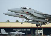 32-8058 - Japan - Air Self Defence Force Mitsubishi F-15DJ aircraft