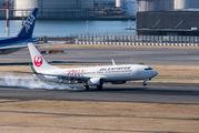 JA331J - JAL - Express Boeing 737-800 aircraft