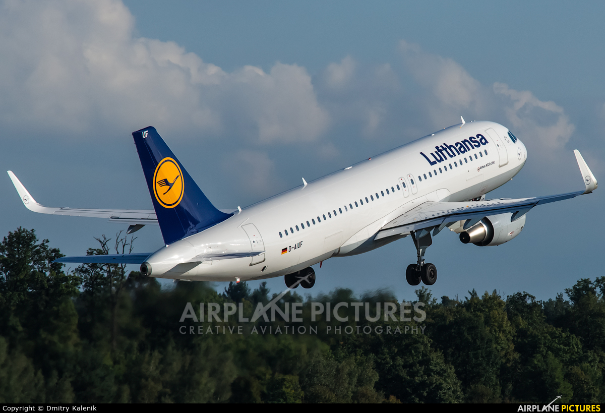 Lufthansa D-AIUF aircraft at Frankfurt