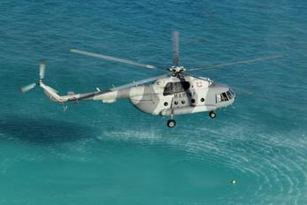 ANX-2204 - Mexico - Navy Mil Mi-17