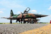 4509 - Mexico - Air Force Northrop F-5E Tiger II aircraft