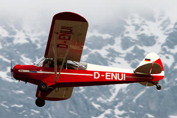 D-ENUI - Private Piper L-18 Super Cub