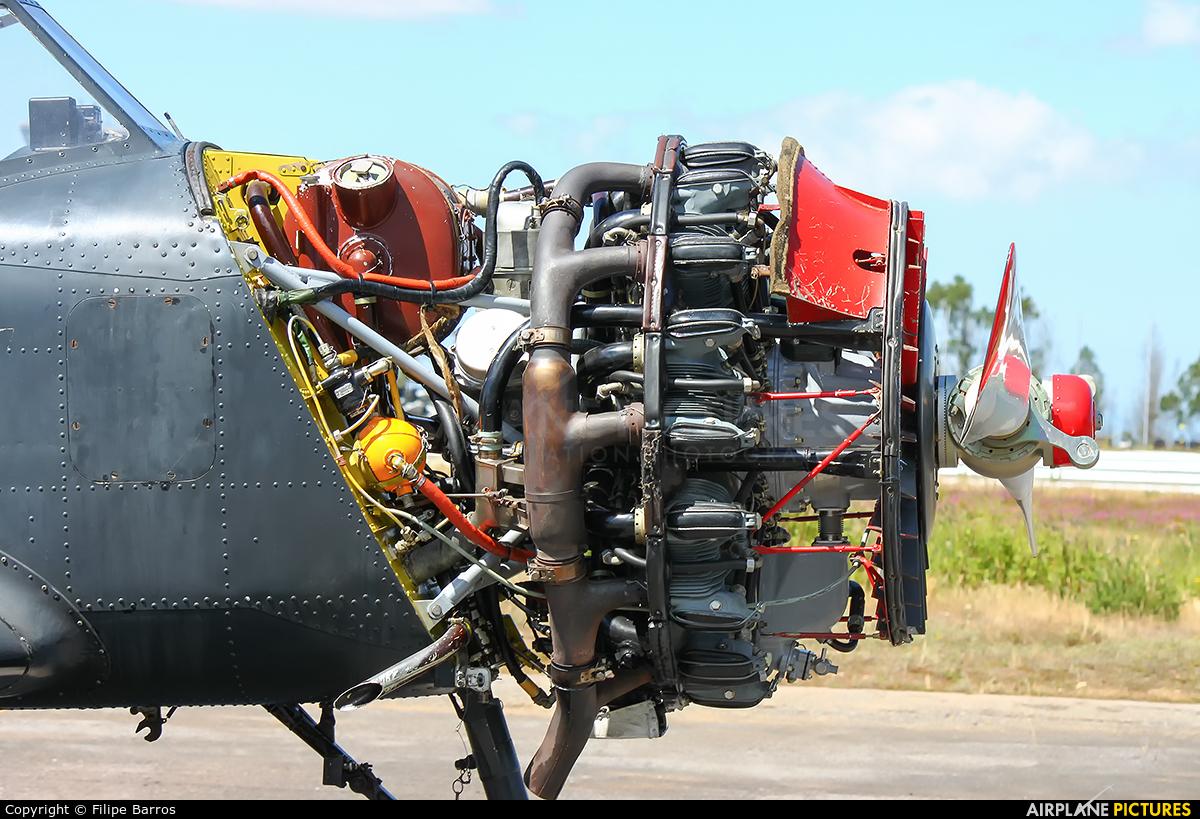 Smokewings SP-YOC aircraft at Maia