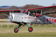 G-ASOM - Private Beagle A61 Terrier aircraft