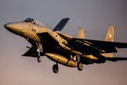 42-8842 - Japan - Air Self Defence Force Mitsubishi F-15J aircraft